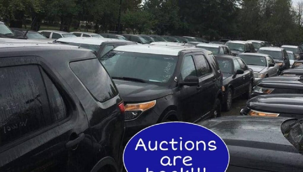 CHP Fleet Vehicle Auctions are back